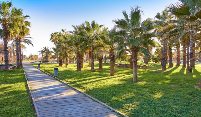 Descubre las playas familiares de Castellón de la Plana