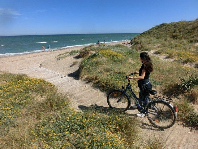 albufera y playas valencia familia
